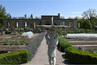 The restaurant at Villa Augustus in Dordrecht